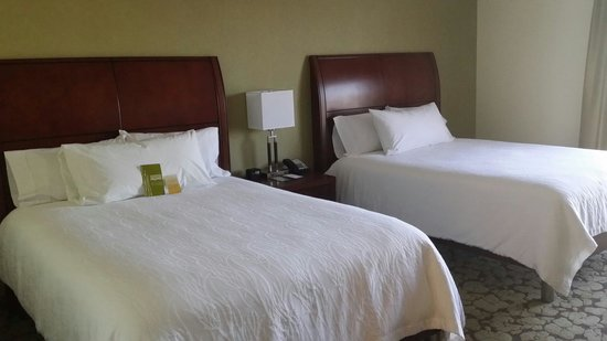 Hilton Garden Inn Durham/University Medical Center: 2 Queen Beds