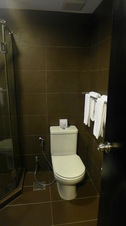 The Brunei Hotel: Toilet