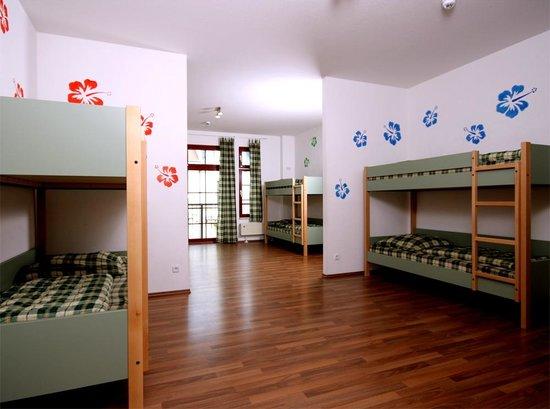 Sleepy Lion Hostel, Youth Hotel & Apartments: 8-bed dorm
