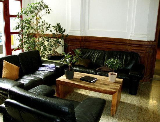 Sleepy Lion Hostel, Youth Hotel & Apartments: lobby