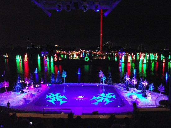 Christmas time at Seaworld - Picture of SeaWorld Orlando, Orlando ...