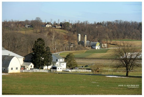 Homestead Lodging: Landscapes of the Amish countryside