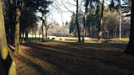 Park im. Henryka Wieniawskiego