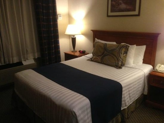 BEST WESTERN Plus Evergreen Inn & Suites: bed