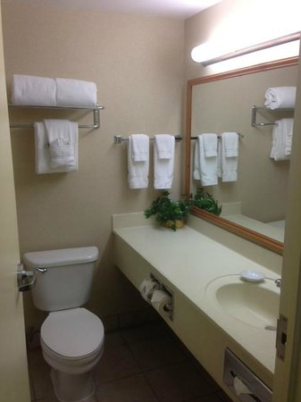 BEST WESTERN Plus Evergreen Inn & Suites: bathroom