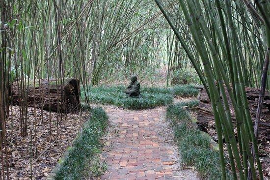 Delicieux Kanapaha Botanical Gardens