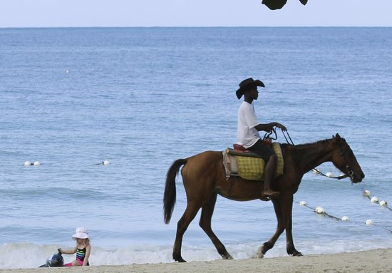 Nirvana on the Beach: Lots of Opportunities for Horseback Riding on the Beach!