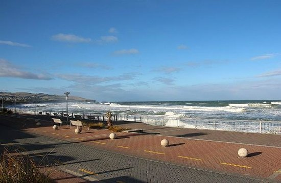 Relaxed Tours: St Clair Beach Dunedin