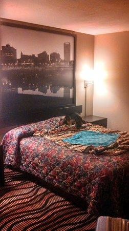 Super 8 Lakeland : Cute room!