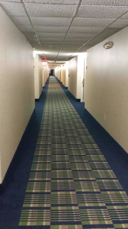 Quality Inn Havelock: Main. Hallway