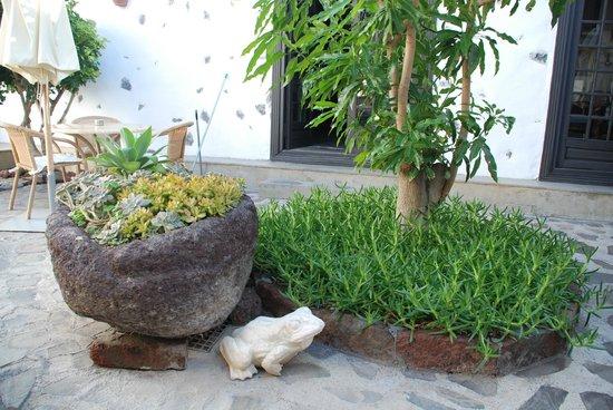 Parador de la Gomera: garden
