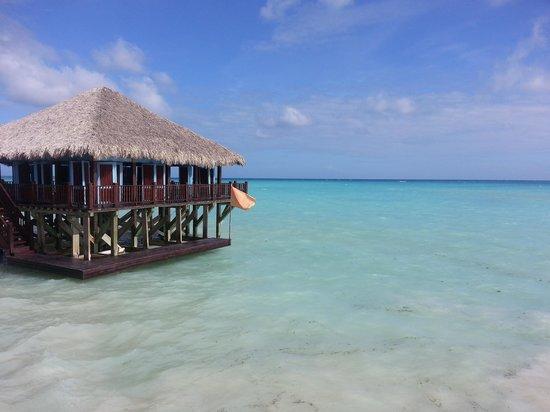 Sanctuary Cap Cana by AlSol: The Blue Marlon Restaurant (part of it)