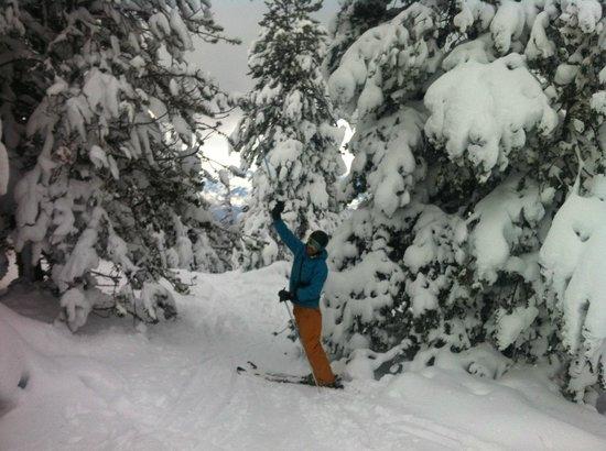 Estación de esquí La Masella: entre el bosque en Masella
