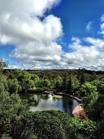 Fairmont Resort Blue Mountains - MGallery Collection: View from the room.