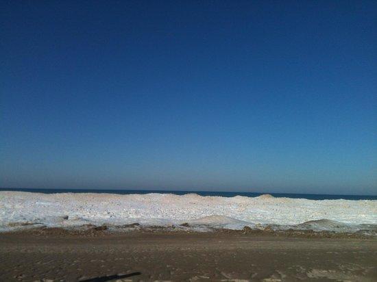 Warren Dunes State Park: Dec. 28, 2013.  Nice place for a winter walk.