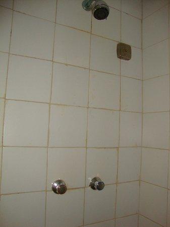 Dunes Hotel & Beach Resort : No pressure old shower.