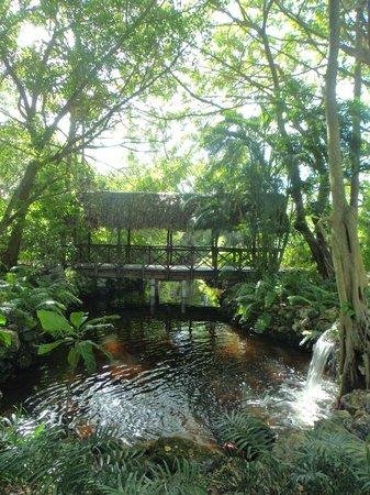 Paradisus Punta Cana Resort: Área de lazer