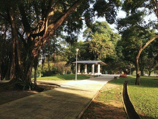 Sembawang Park: Shelter throughout the park