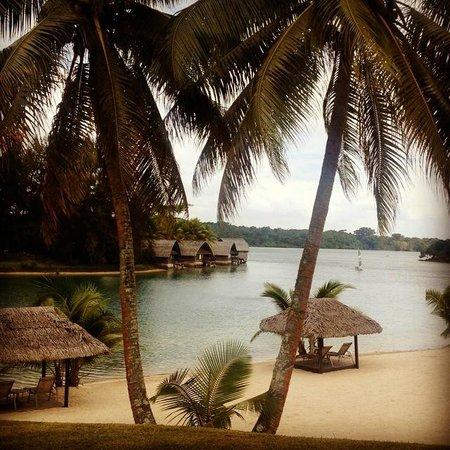 Holiday Inn Resort Vanuatu : Beautiful grounds