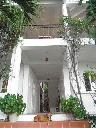 Green Roof Inn: Hotel grounds