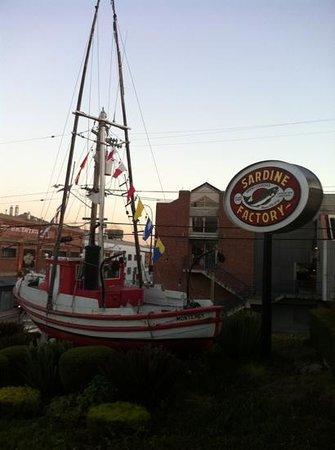 Sardine Factory: welcome