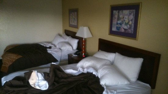 Comfort Inn & Suites Athens: Room