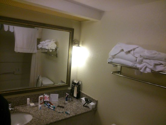 Comfort Inn & Suites Athens: Bathroom