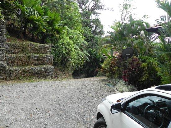 Villas by Tekoa : Steep road to villa