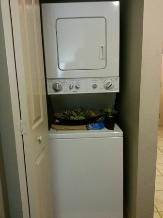 Worldmark Reno: Washer and dryer in the unit.