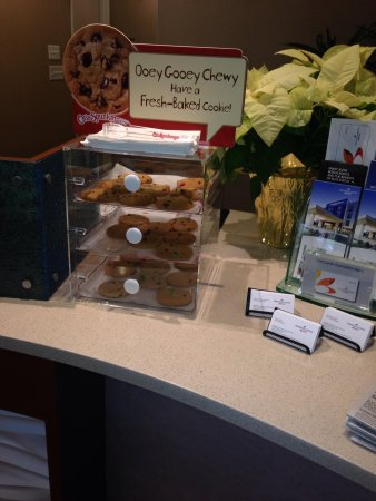 SpringHill Suites Philadelphia Langhorne: Cookies for the kids at the reception :---)