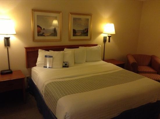 Baymont Inn & Suites Detroit Airport/Romulus: King bed, room 304