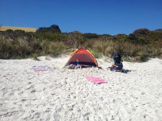 BIG4 Bicheno Cabins: Enjoying the squeeky white sands of Waubs Bay beach