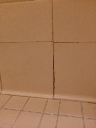The Westin Kaanapali Ocean Resort Villas : shower