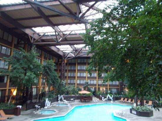 Seattle Airport Marriott: Great pool for families!