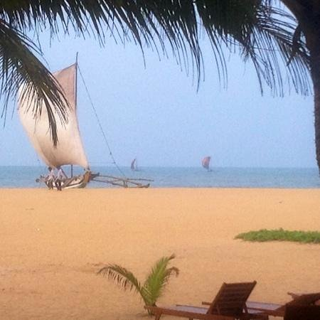 Jetwing Beach: View at breakfast December 28 2013