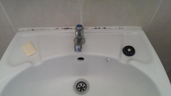 Langkah Syabas Beach Resort : Mold on bathroom sink