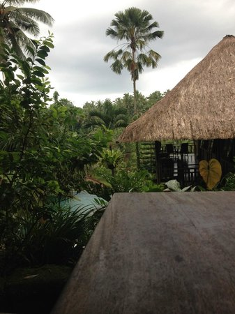 Graha Moding Villas: View from reception
