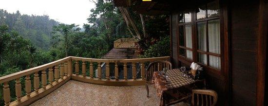 Graha Moding Villas: View from balcony