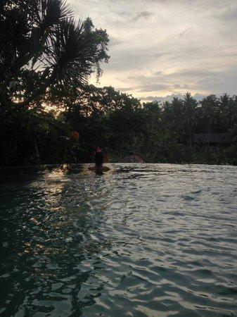 Graha Moding Villas: Morning Swim in Paradise!