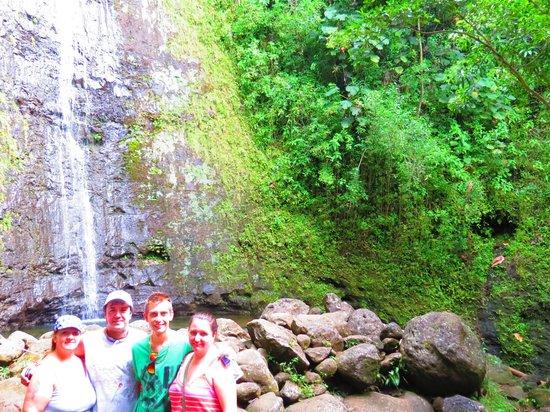 Manoa Falls: Bamboo trees