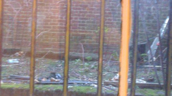37 Collingham Place London : Vue pitoresque