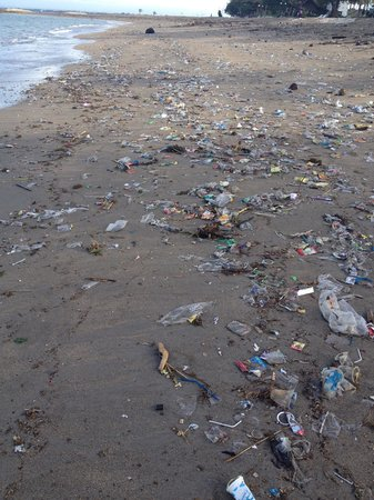 Legian, Endonezya: This was the nastiest beach I have ever visited