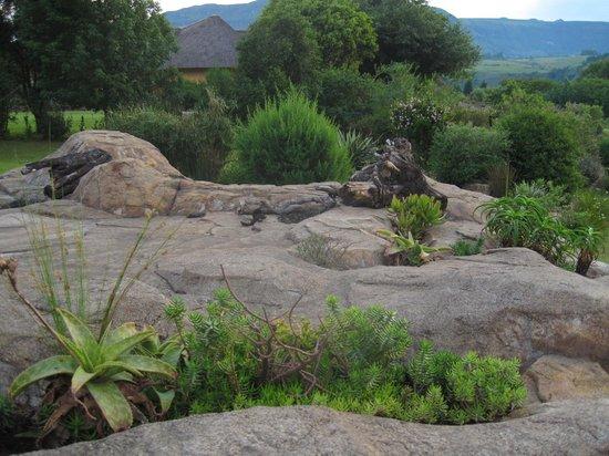 Inkunzi Cave & Zulu Hut: Rocks over the Inkunzi Cave