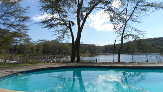 Naivasha, Kenia: Nice View from the pool to the Lake