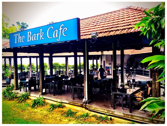 Bark Cafe Parking