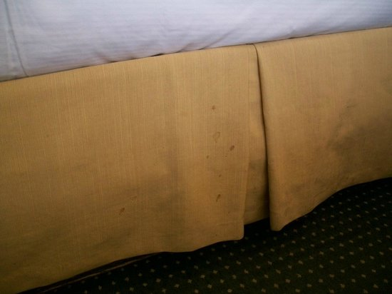 Lodge of  Four Seasons: Stains on the bed ruffles
