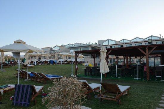 Kiani Beach Resort: Beach area