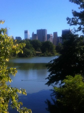 Hilton Garden Inn Times Square: Central Park - view to the city on a morning run...