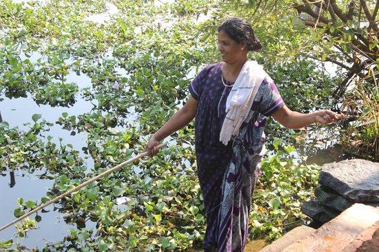 Royal Riviera Hotel & Resort: Fishing in Kumarakom Backwater.