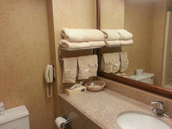 Poughkeepsie Grand Hotel: Vanity Area